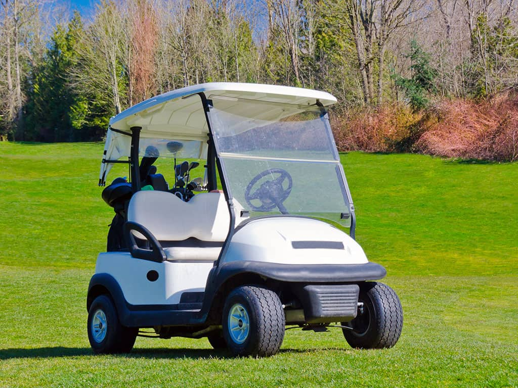 Golf-Buggy-Theft
